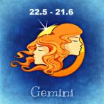 03gemini_compatibility