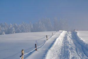 winter-1143130_1280